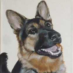 "Keeta, 2012, German Shepherd Portrait, Acrylic Painting on Canvas, 10""x10"""