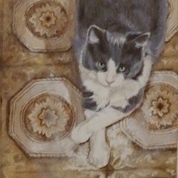 "Walter, 2011, Grey and White Cat Portrait, Acrylic Painting on Canvas, 8""x14"""
