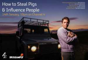 how to steal pigs