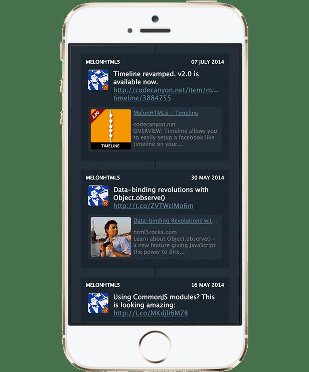MelonHTML5 - Timeline WP - 5