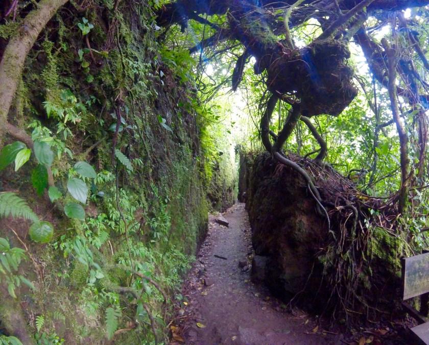 Mombacho trail
