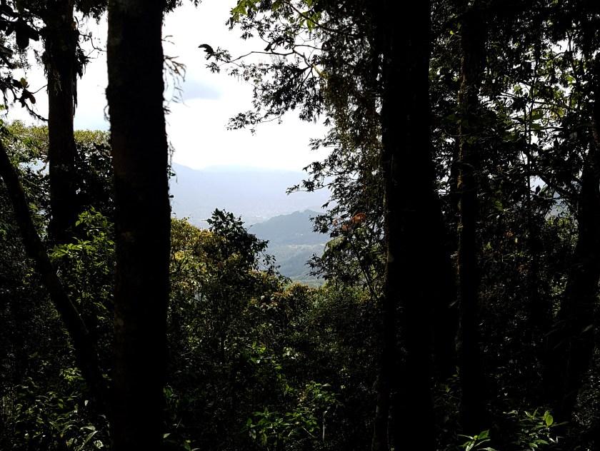 Hiking Selva Negra