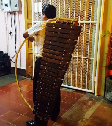 Musician Calzada