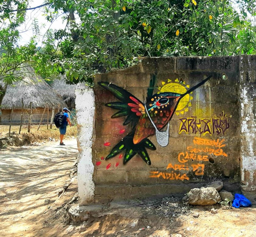 bird mural Palomino Colombia