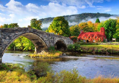 Ivy and Mist, Llanrwst, Wales