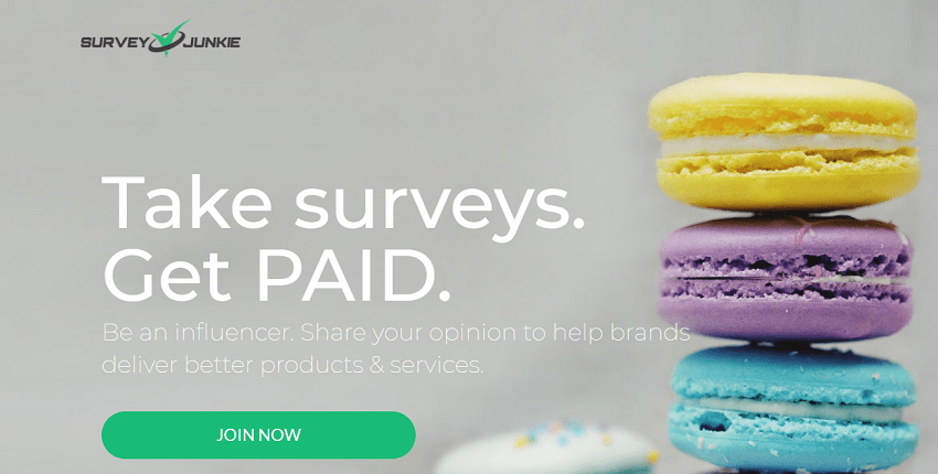 SURVEY JUNKIE REVIEW: IS SURVEY JUNKIE A SCAM?