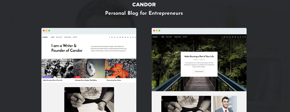 best wordpress themes for blogs- candor