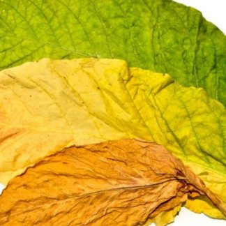 Tobacco Leaf Wax Melts