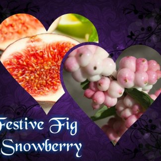 festive fig and snowberry wax melts