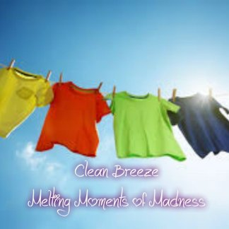 Clean breeze wax Melts