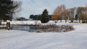 View Ovre 18th Pond to Clubhouse