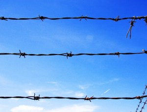 barbed-wire-photo_1371_20060329