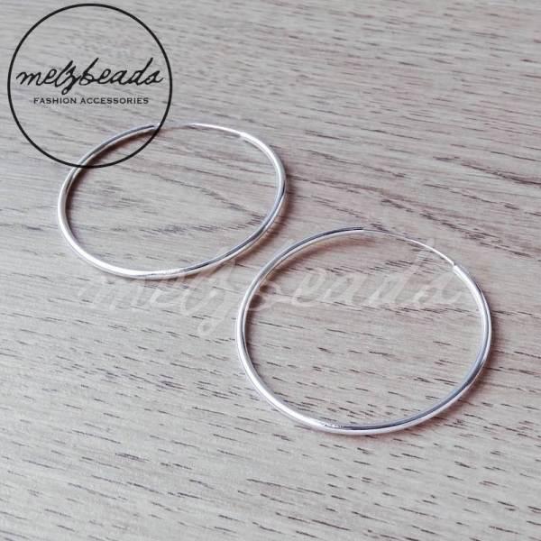 Large Sterling Silver Hook Earrings