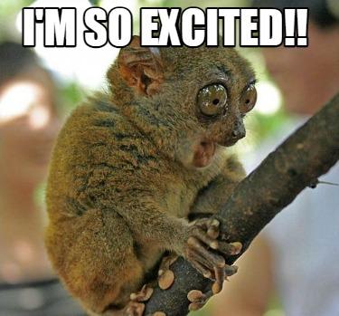 Meme Creator - Funny I'm so excited!! Meme Generator at MemeCreator.org!