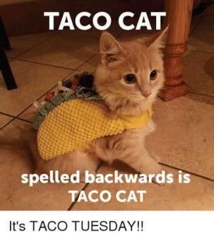 happy taco tuesday meme