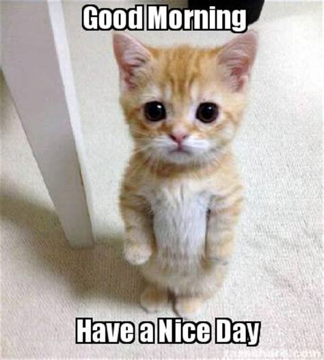 Have a nice day Memes