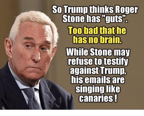 Top 25 Roger Stone Memes