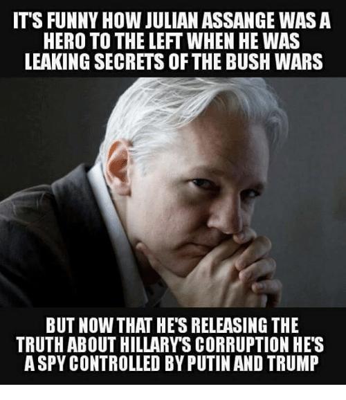 20 Best julian assange memes