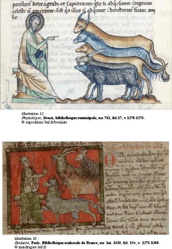 Memoire Online  La nomination des animaux par Adam dans lOccident latin du XIIe au XVe sicle
