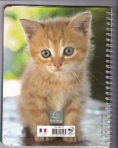 Cahier De Textes Spirales Thme Animaux 17x22cm Visuels Chat