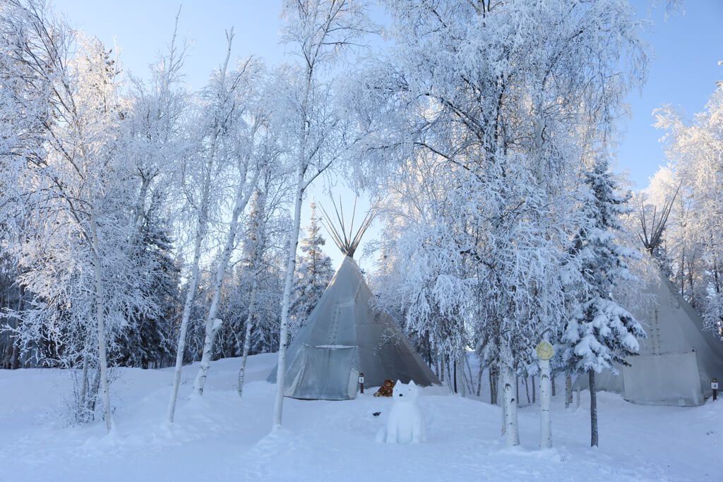 A traditional teepee surrounded by snow covered trees at Aurora Village in Yellowknife