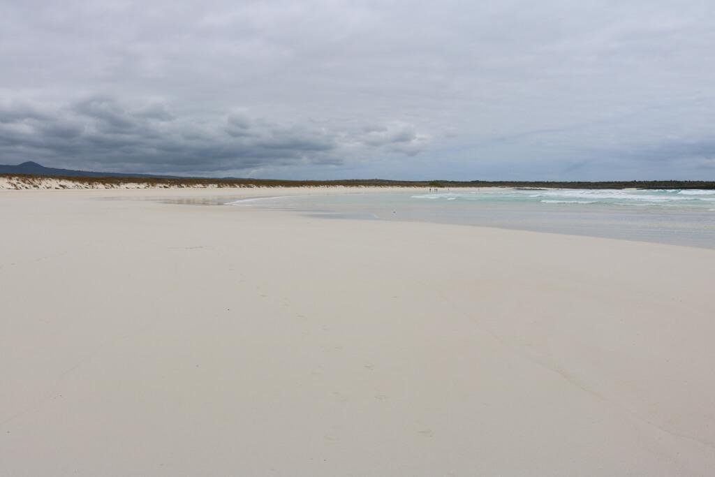 Tortuga Bay on Santa Cruz island in the Galapagos, a stunning white sand beach
