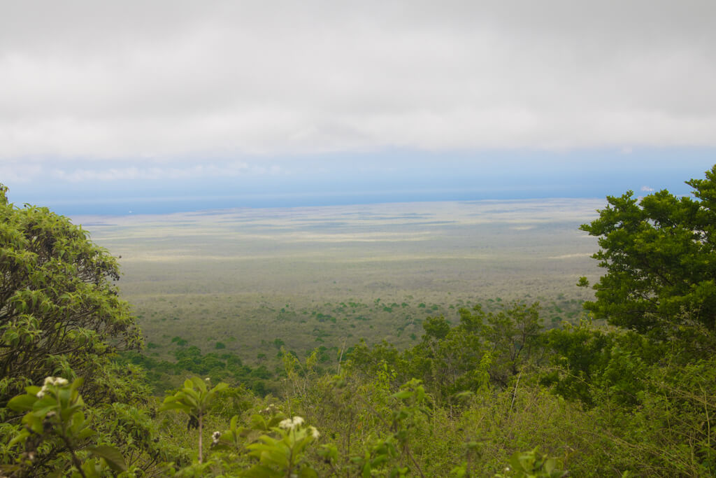 View from Cerro Mesa Reserve in the highlands of Santa Cruz, Galapagos
