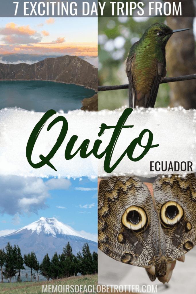 Discover 7 exciting day trips from Quito! Visit Mindo, Cotopaxi, Quilotoa, La Mitad del Mundo, Las Termas de Papallacta, Bellavista Cloud Forest Reserve and Otavalo Market.