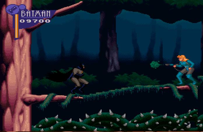 the adventures of batman robin snes