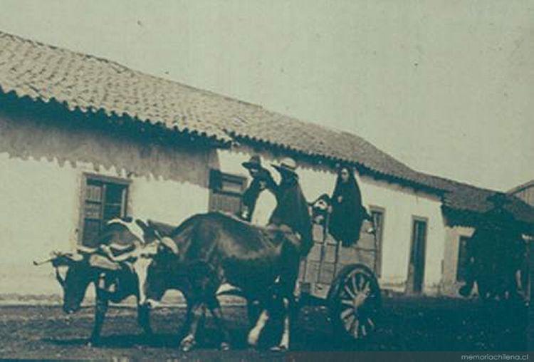 Carreta tirada por bueyes 1906  Memoria Chilena