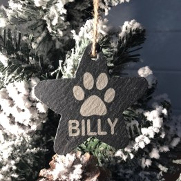 IMG 1192 - Personalised Slate Pet Name Star