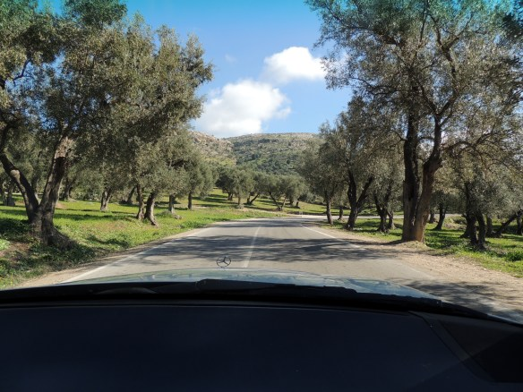 Starting up the road to Moulay Idriss du Zerhoun after leaving Volubilis.