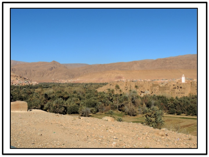 A number of crops are cultivated in the Tinghir oasis.