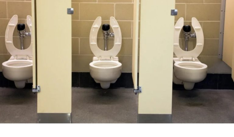 Do You Know How to Use a Public Toilet?