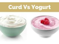 Curd or Yogurt