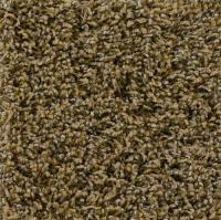 Carpet With Pad Attached Menards - Carpet Vidalondon