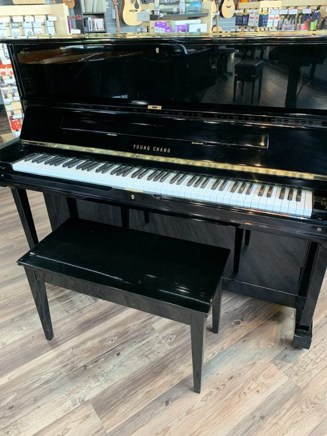 Young Chang 48'' Black Upright Front View