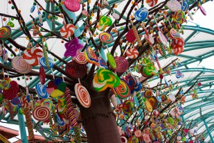 candy tree