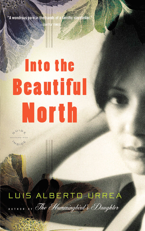 Into the Beautiful North book cover