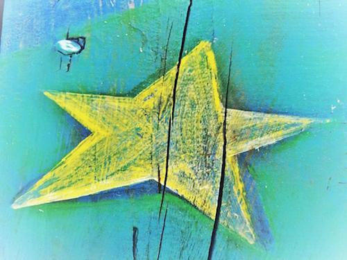 Star Burst © lynette sheppard