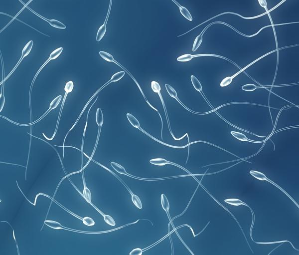 ¿Es posible congelar tejido testicular y después reimplantarlo?