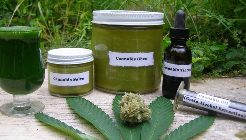 Image result for cannabis and cancer treatment