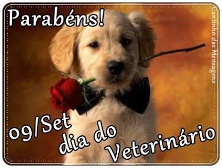 Dia do médico veterinário-parabéns pelo seu dia