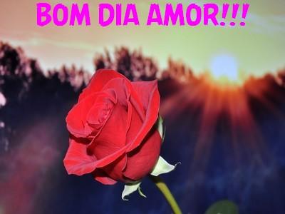 Mensagem Em Video Bom Dia Meu Amor Romantico