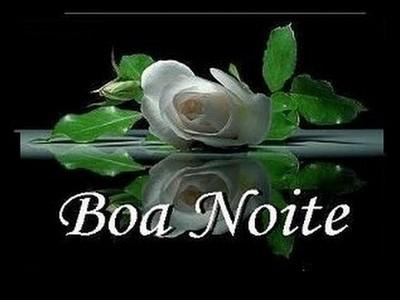 mensagem de boa noite com flores para face
