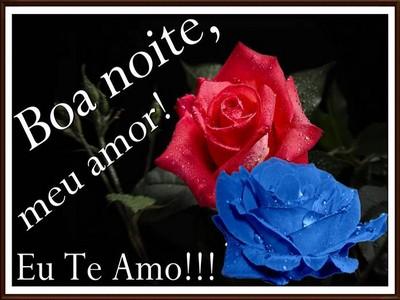 mensagem de boa noite com flores de amor