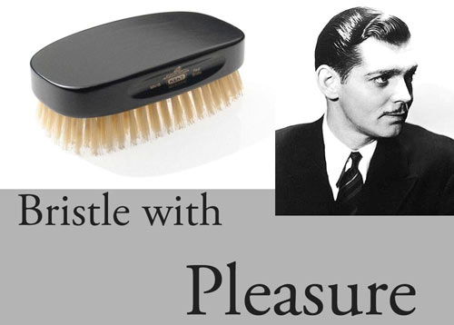 bristle-with-pleasure