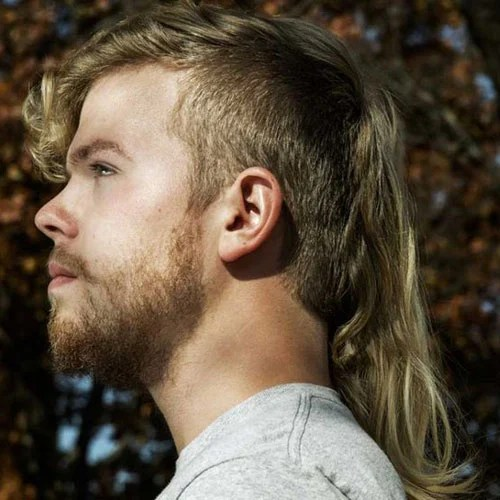 Image Result For Hairstyles Long Hair