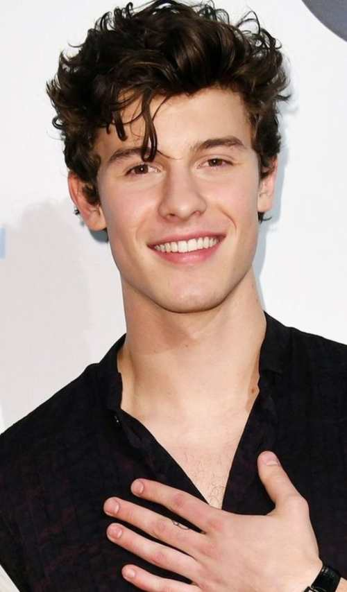 Shawn Mendes Hairstyle Mens Hairstyles Amp Haircuts X