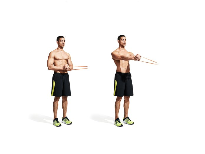 The 30 Best Back Exercises of All Time - Pallof Press Iso Hold